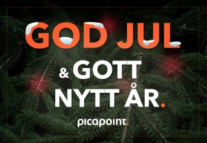 Picapoint_godjul